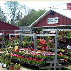 Chester NJ Farms